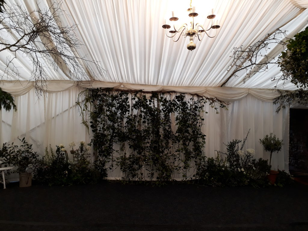 A secret garden created in the foyer marquee - great photo backdrop